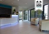 Panda Dog Toilettage