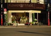 Flower@ttitude